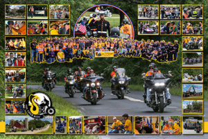 2016 VIPER RIDE Commemorative Poster